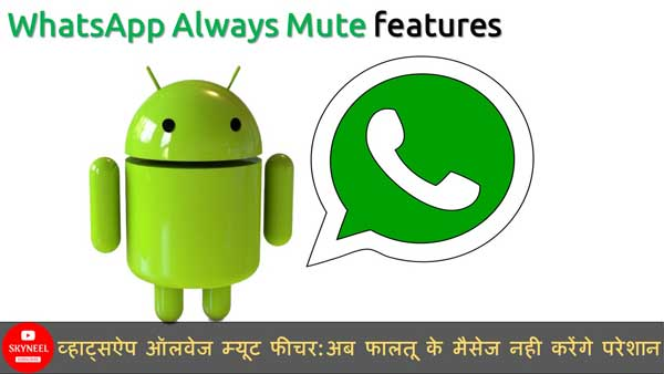 WhatsApp Always Mute Feature