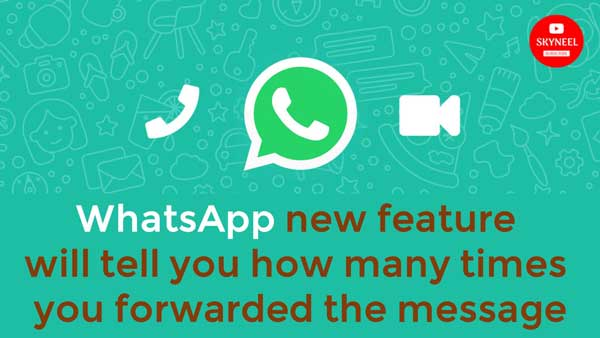 whatsapp forward message feature